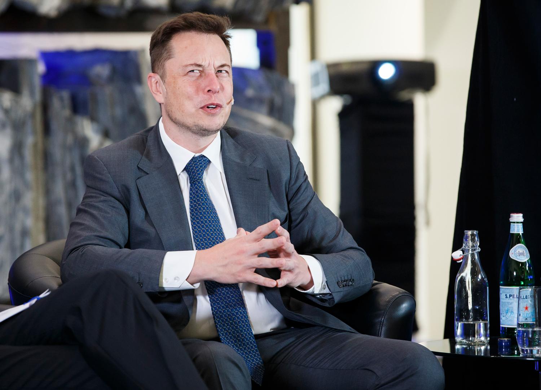 Tesla Motors cofounder and CEO Elon Musk.
