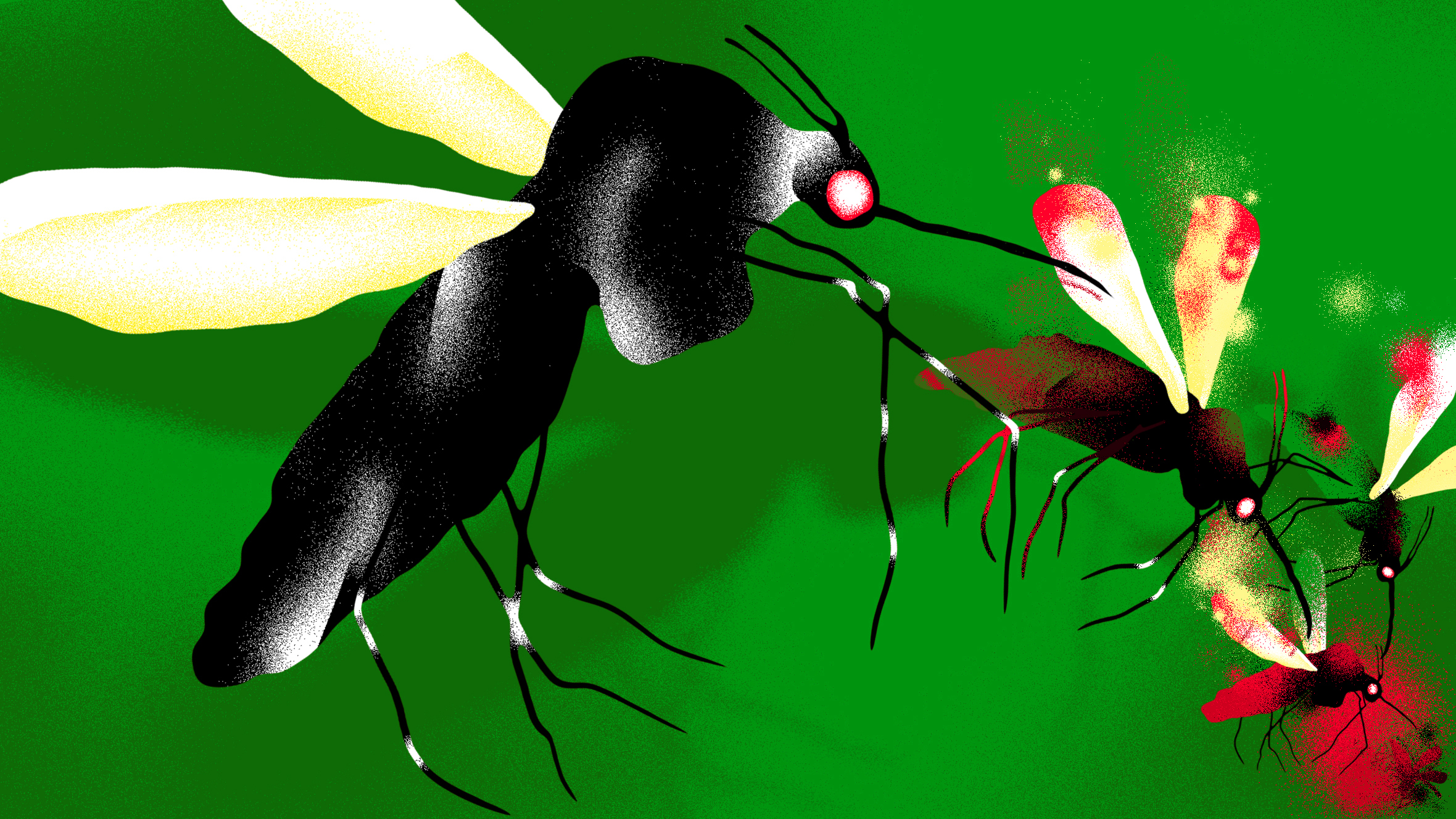 グーグル関連企業 ジカウイルス撲滅に蚊を量産