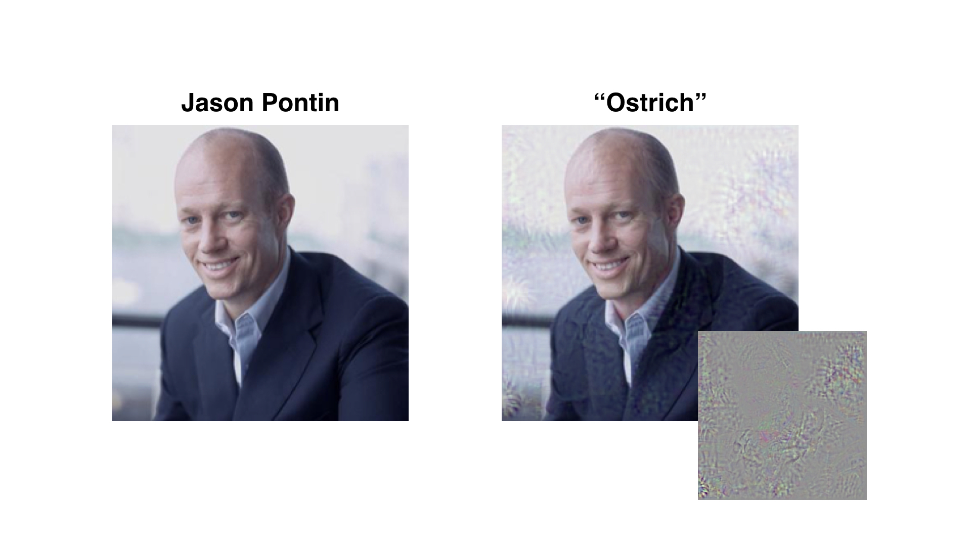 With a little bit of added noise (lower right), a computer can be fooled into thinking that an image of MIT Technology Review's Editor-in-Chief Jason Pontin is in fact an ostrich.