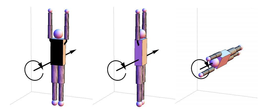 数学者、飛込競技の新技「5回ひねり1回転半宙返り」を提案