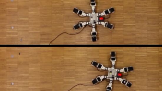 ロボットの実験で、昆虫の足遣いは坂道に最適化していたと判明