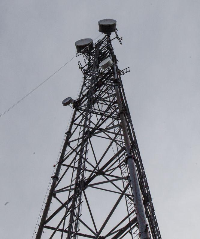 ミリ波を使う 超高速5G通信は 木の葉や雨・雪が苦手