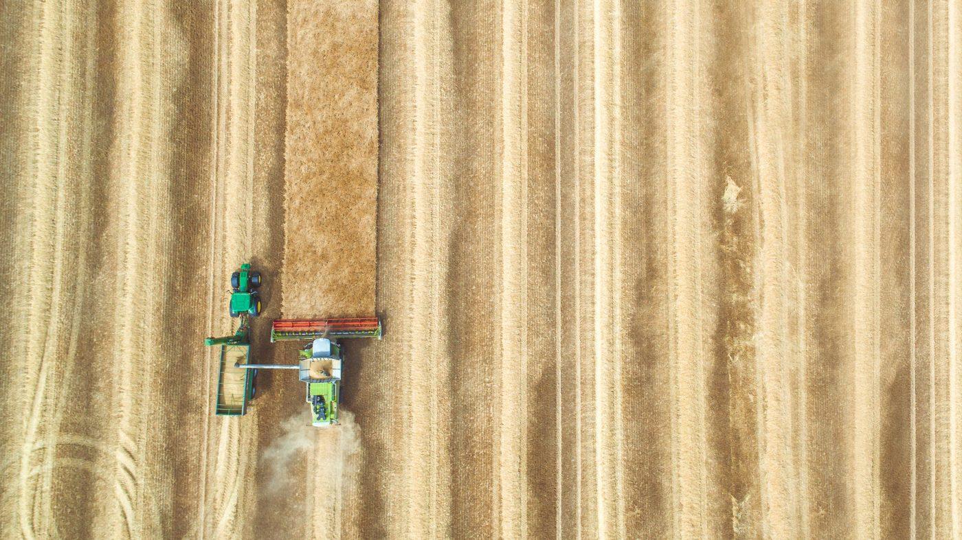 地球レベルでの作物最適化が食糧危機を救う