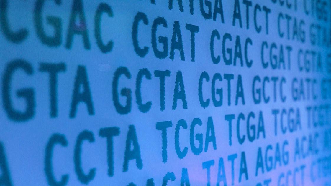 マイクロソフト、遺伝子編集技術のCRISPR向けAIツールを開発