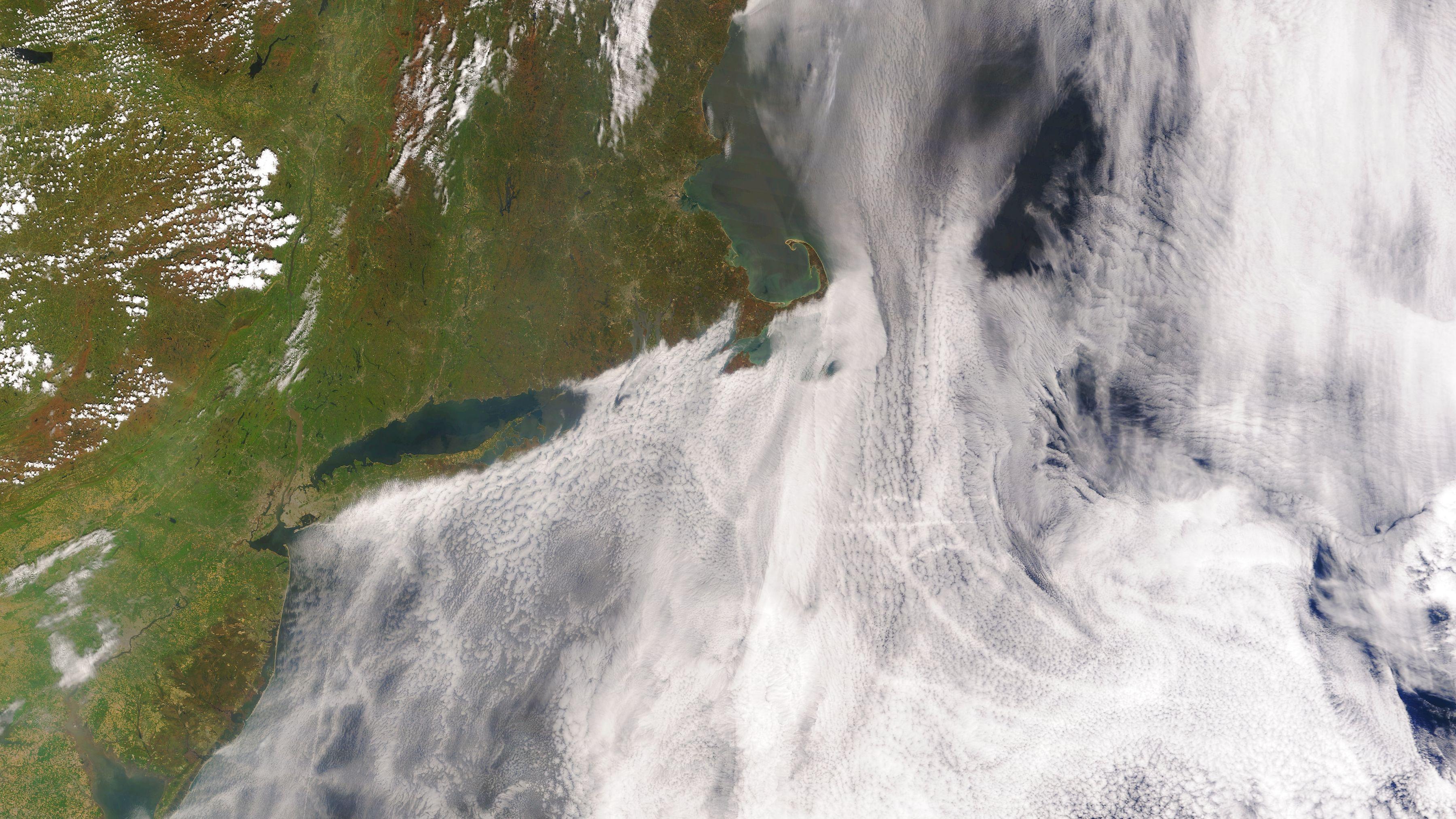 船舶燃料の2020年規制で 新たな温暖化のリスクが浮上