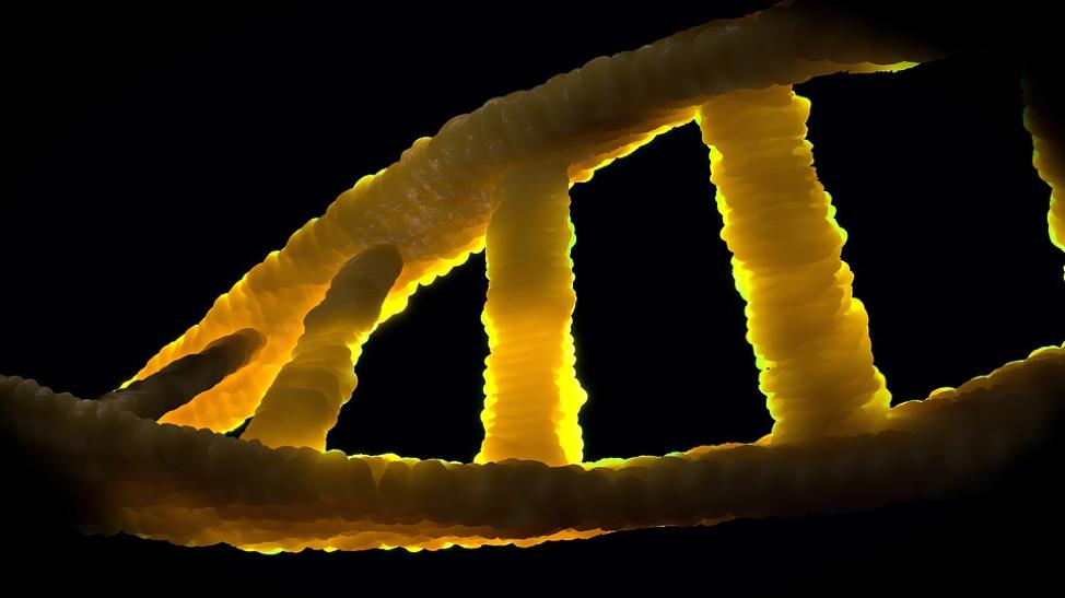 CRISPRに新たなリスク、夢の遺伝子療法に暗雲