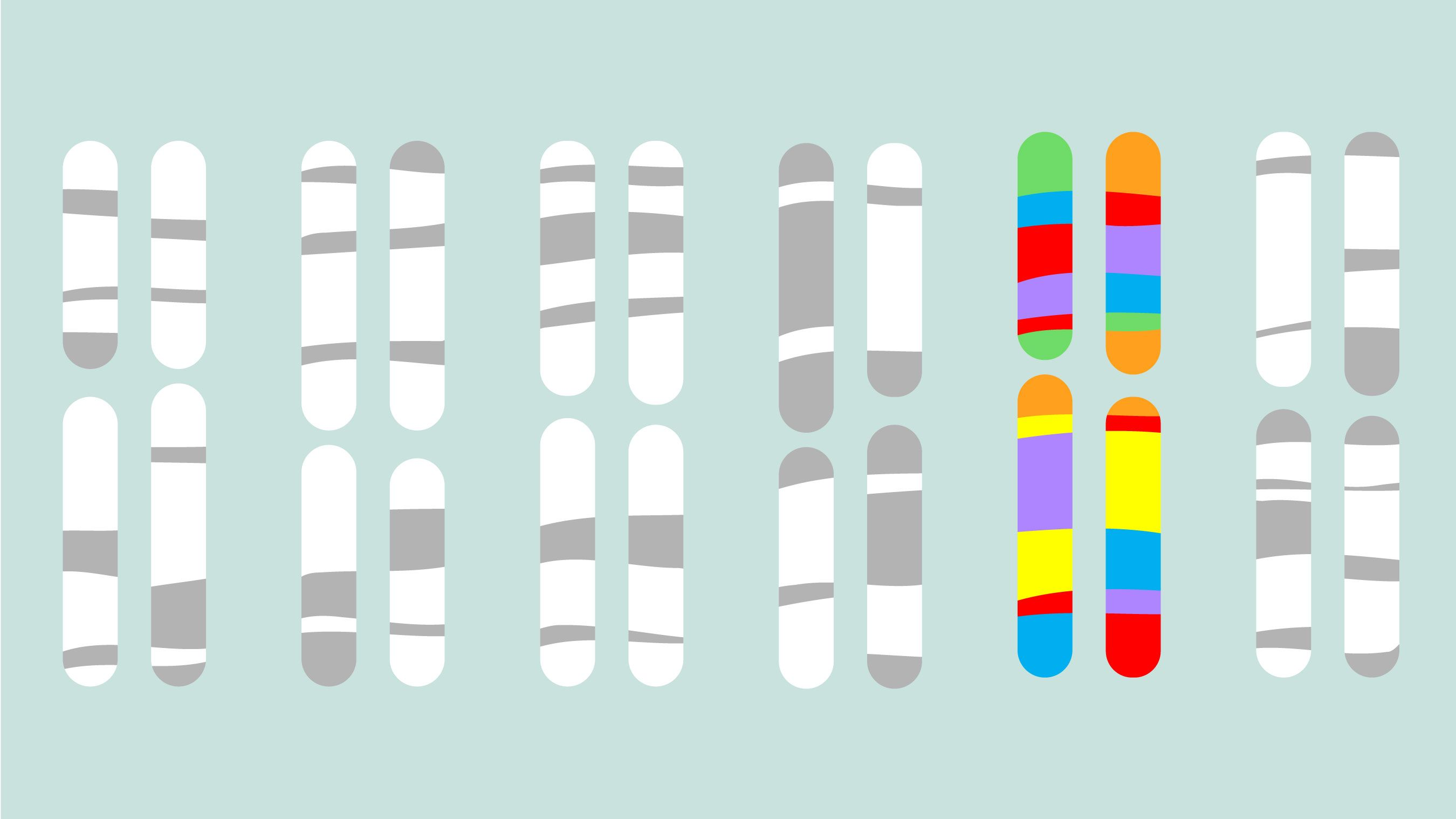 ゲイの遺伝子はなぜ引き継がれるのか?大規模調査が導く1つの仮説