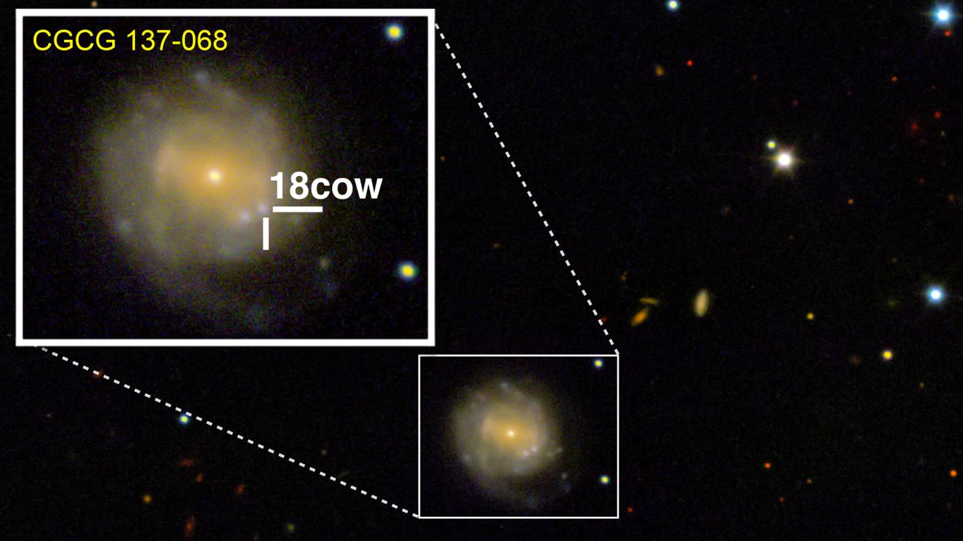 「星がブラックホールになる瞬間」を初観測か?
