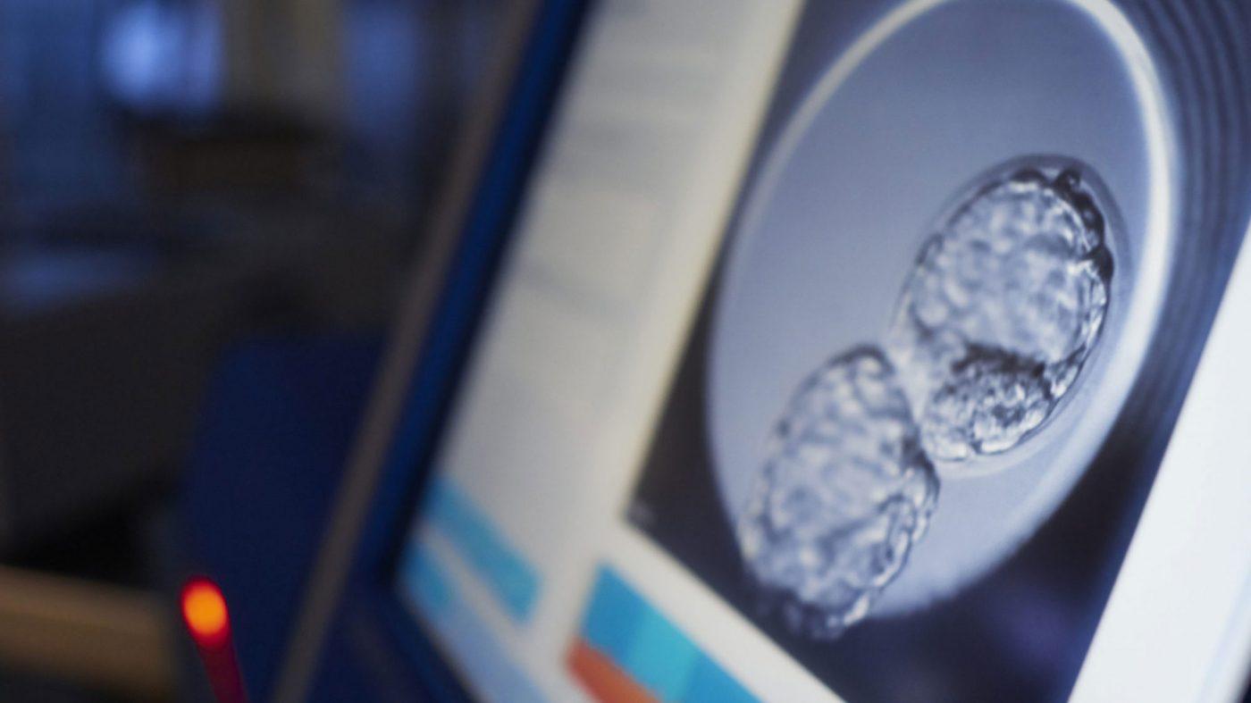 「3人の親」を持つ子、欧州で紡錘体移植による不妊治療が実施