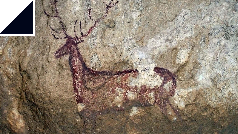 ゲノム解析テクノロジーが解き明かす、洞窟壁画の謎