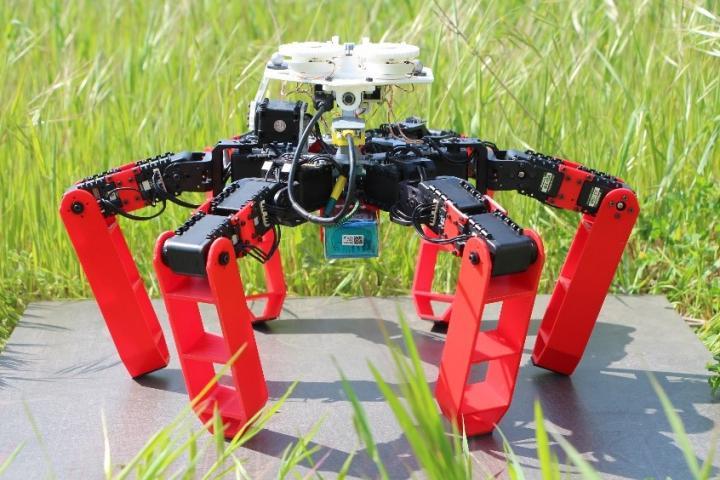 GPS不要、「天空コンパス」で元の場所に戻る砂漠アリロボット