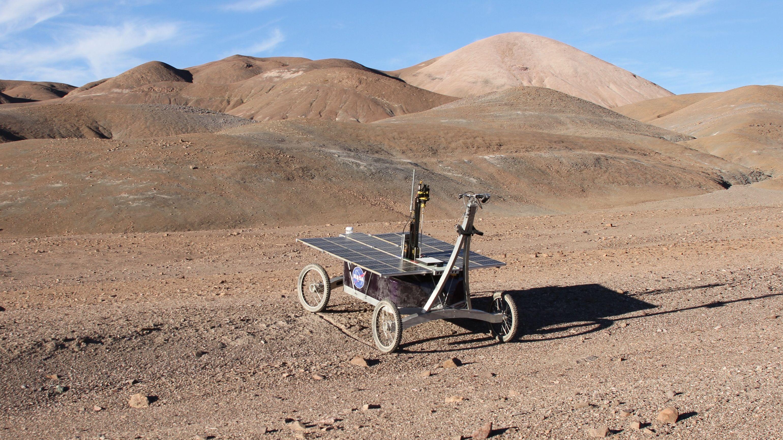 火星の生命体探査に一役? チリの砂漠でデッドゾーンを発見