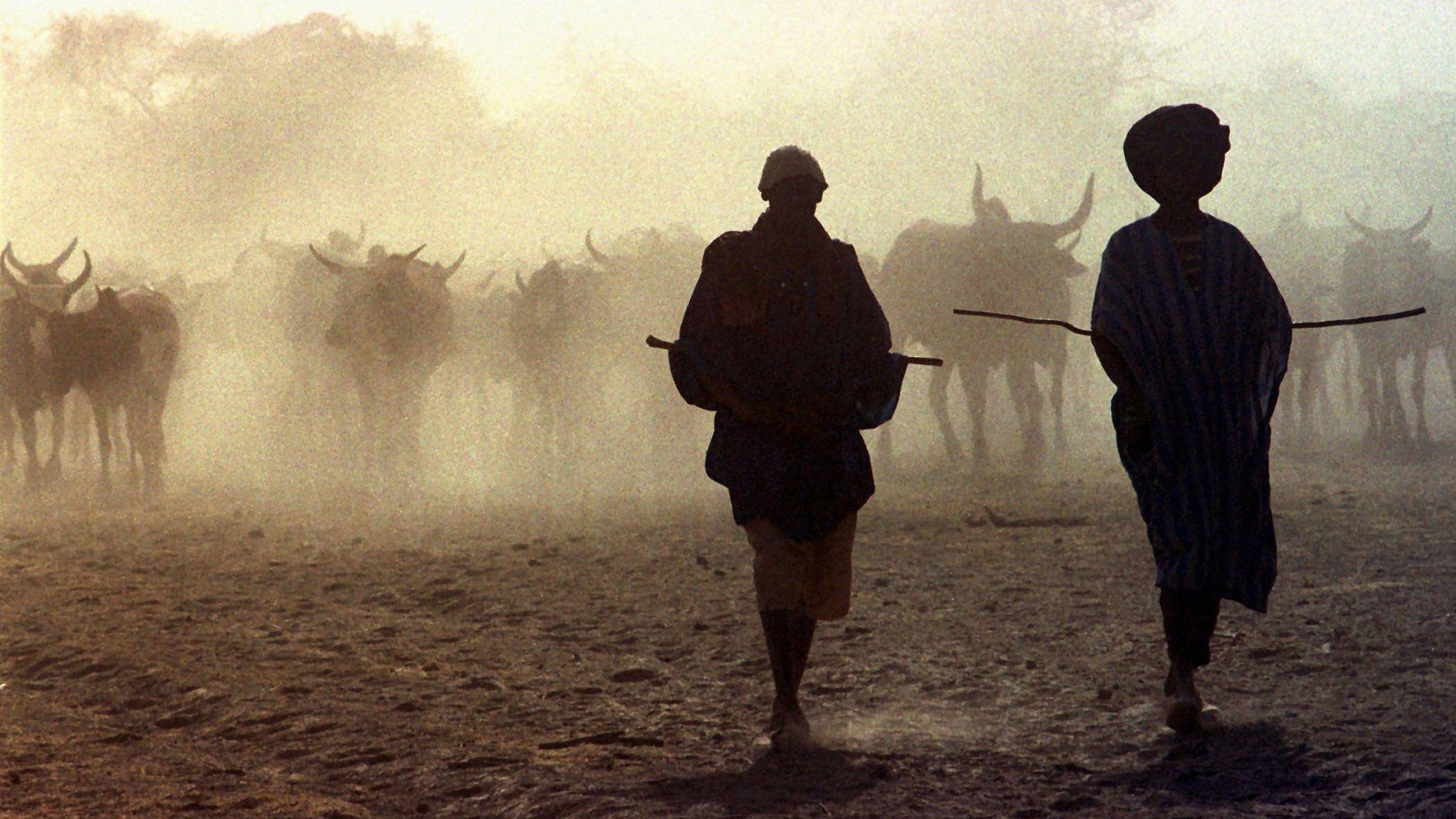 サハラ砂漠の牧畜民たち 人工衛星が変える「水探し」