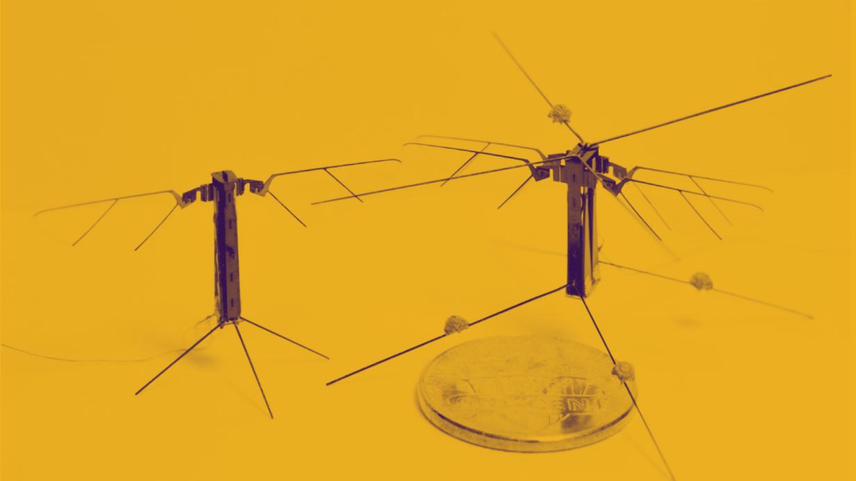 超軽量アクチュエーターで実現、「4枚の羽」で飛ぶ昆虫型ロボット