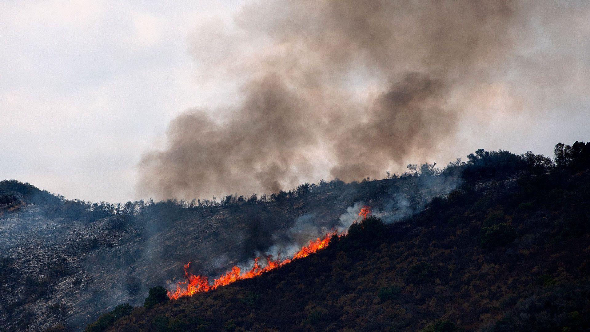山火事を予防する耐火性ゲル、スタンフォード大が開発