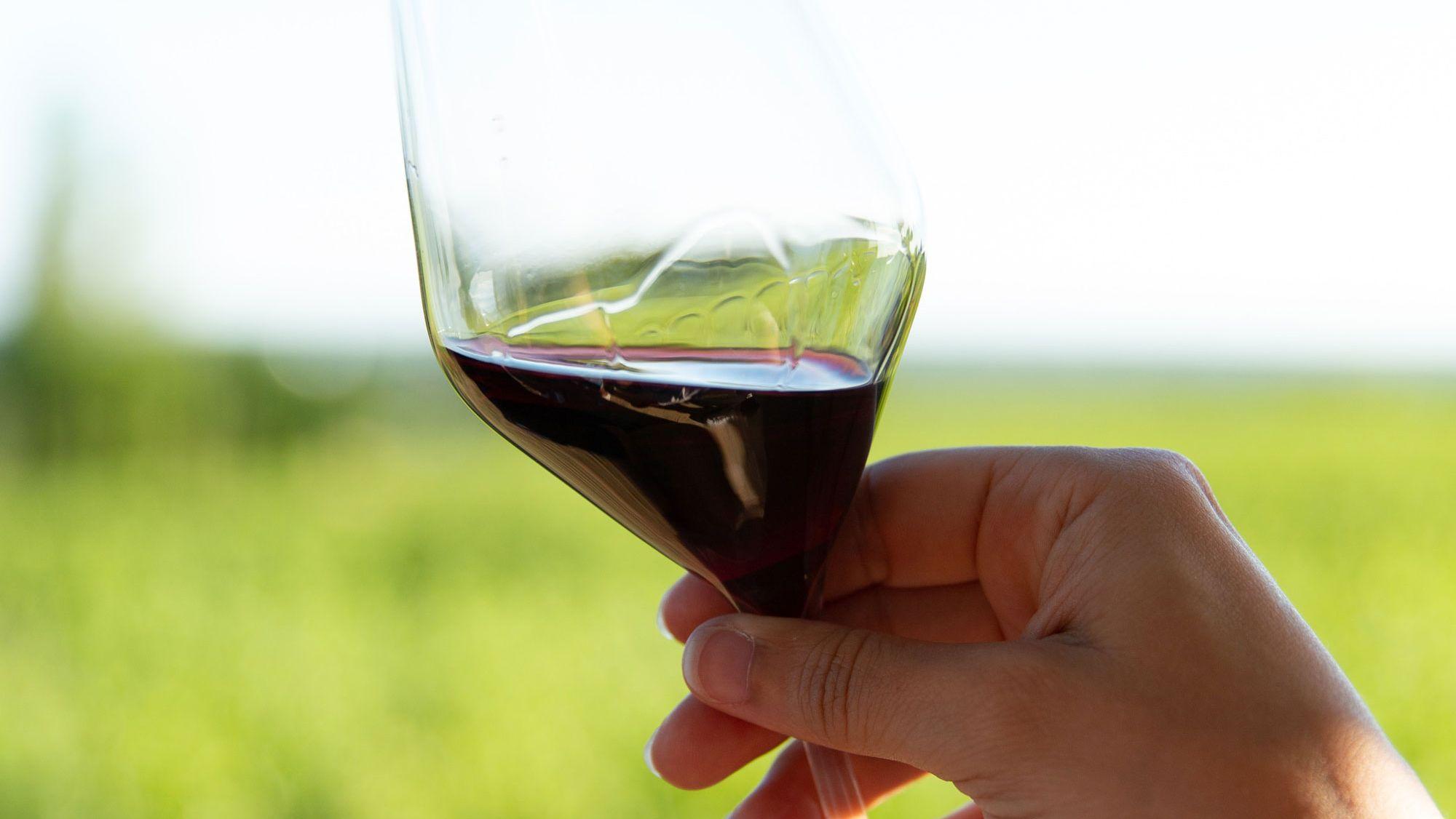 「ワインの涙」現象はなぜ起こる?衝撃波による新理論