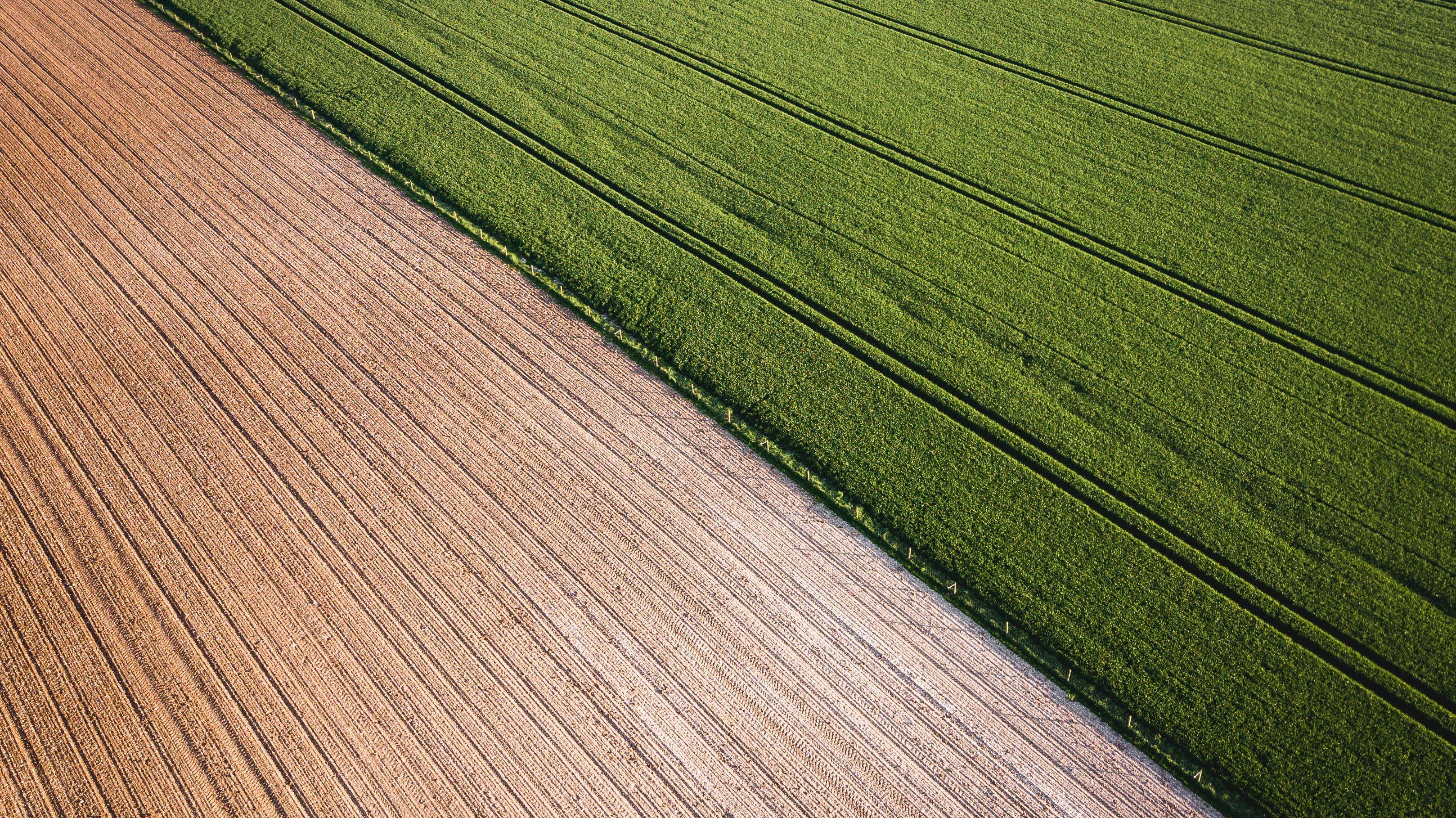 有機農業への移行は「環境にやさしい」のか?