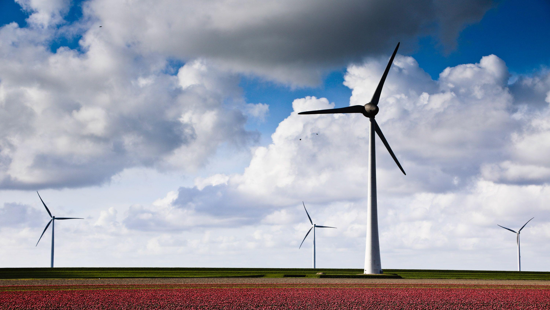 世界の二酸化炭素排出量、2019年は横ばい=IEA報告