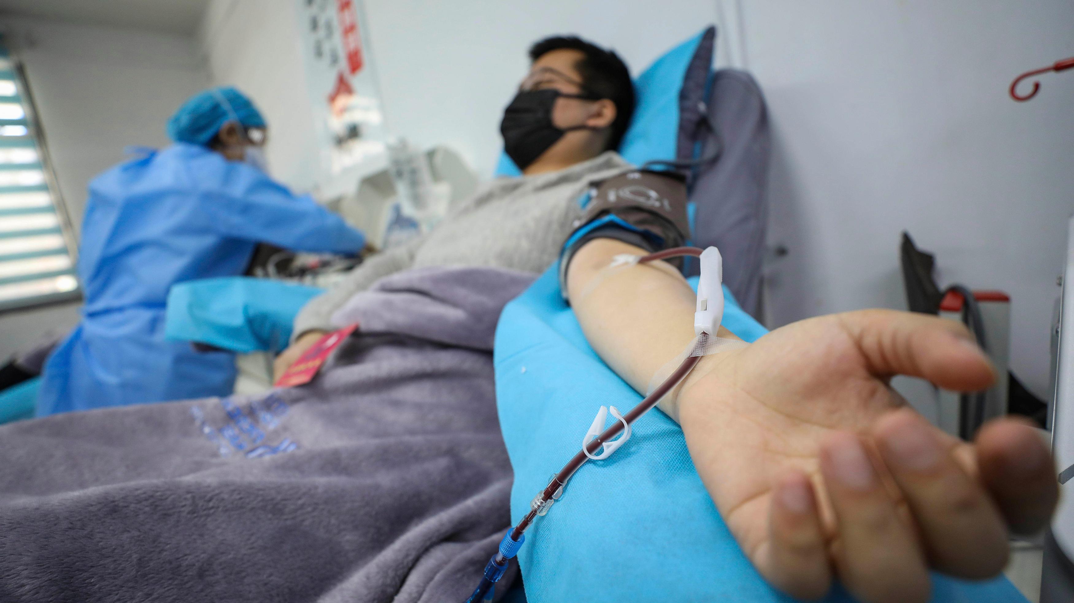 新型コロナ、回復患者の血漿が治療に役立つ可能性