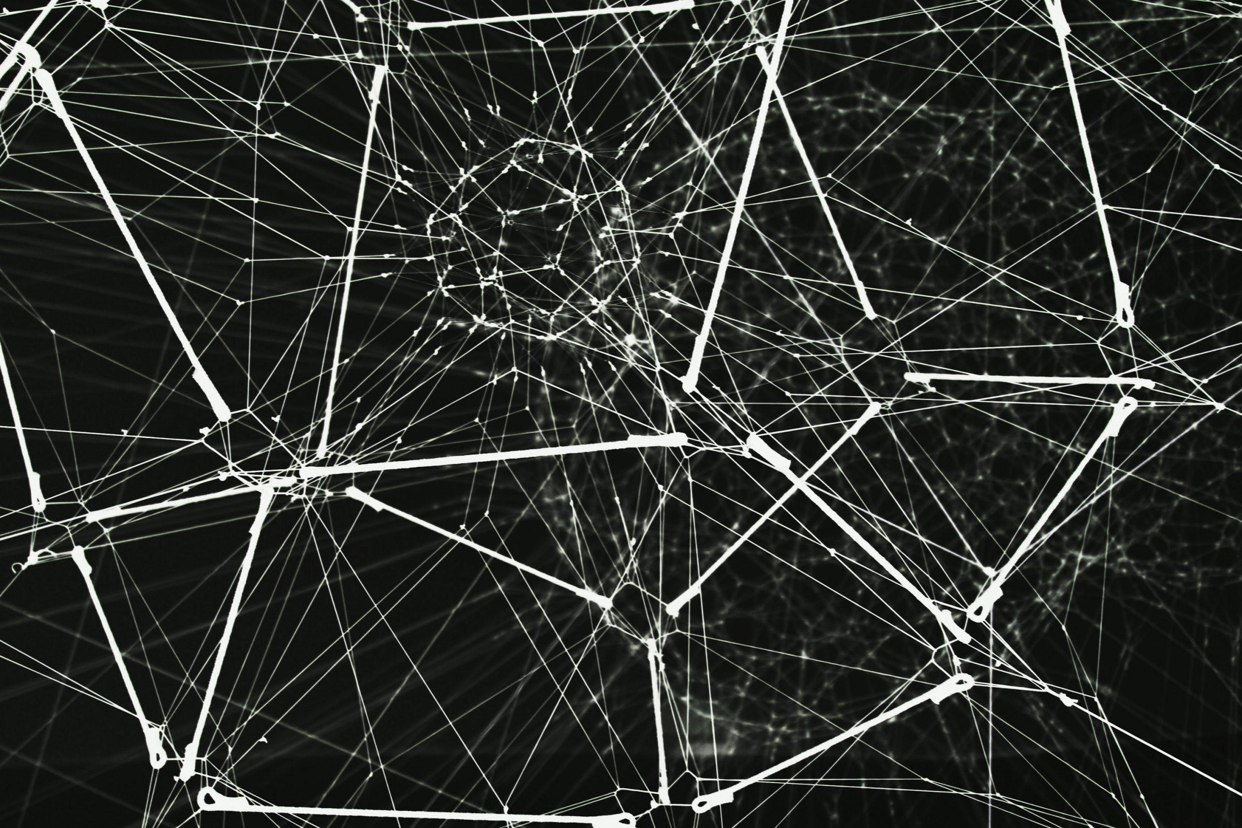 「インターネットを作り直す」ディフィニティが掲げる理想と野望