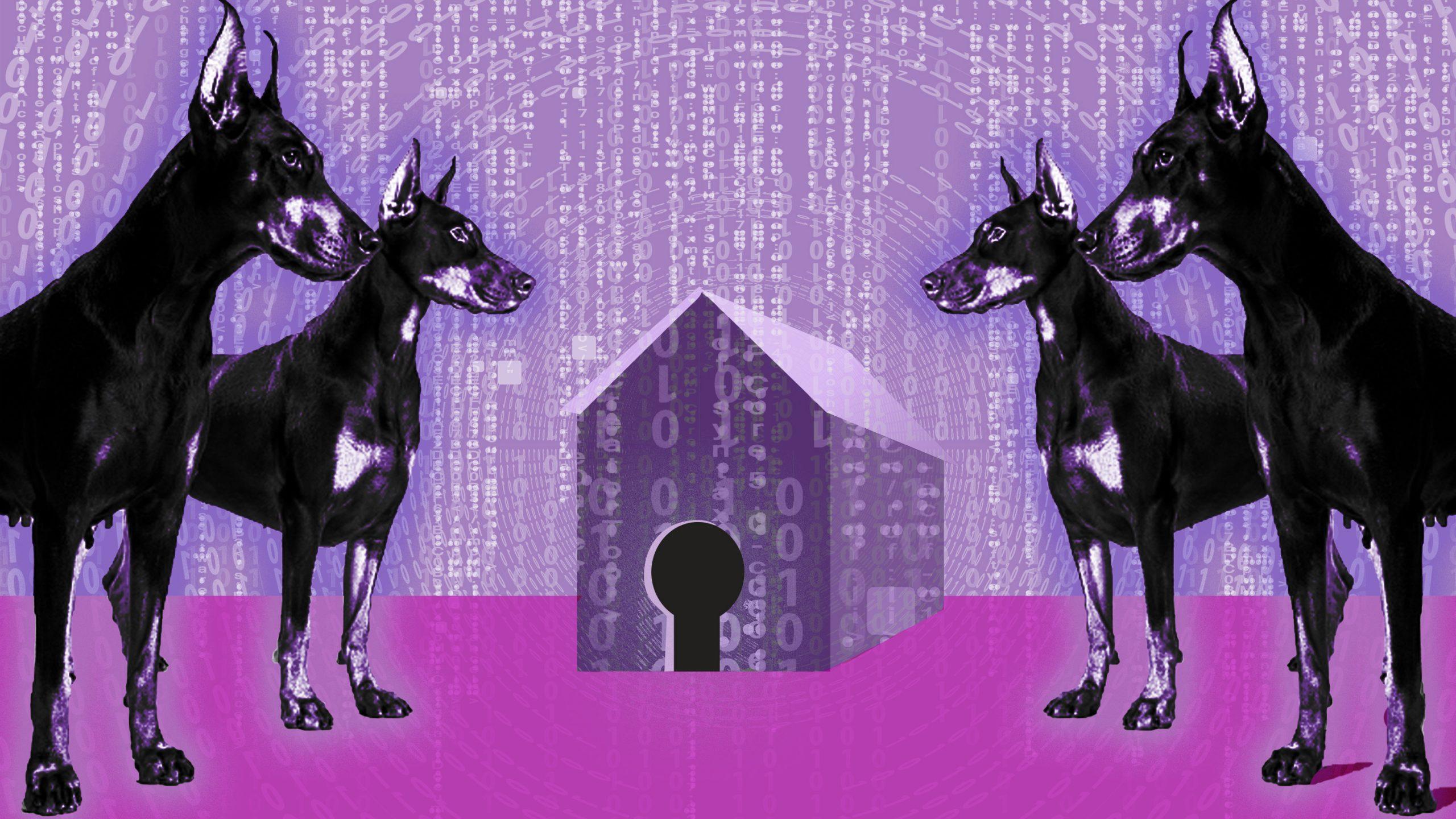 主張:「D7」創設で民主国家主導のデジタル規制議論を