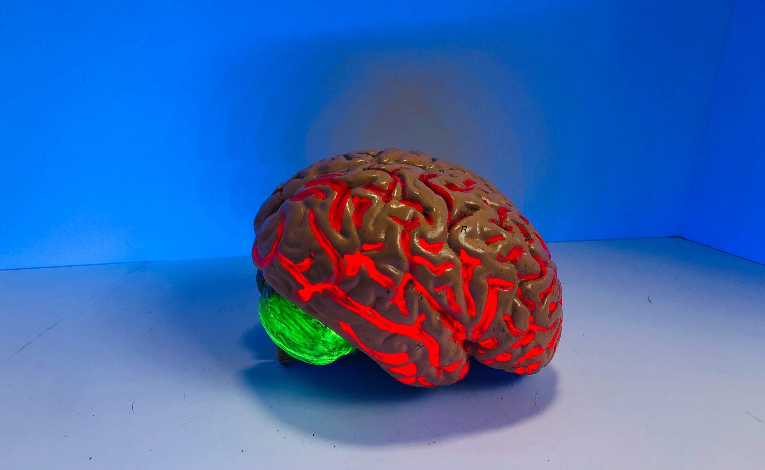 「意識のアップロード」はデジタル不死を実現するか?