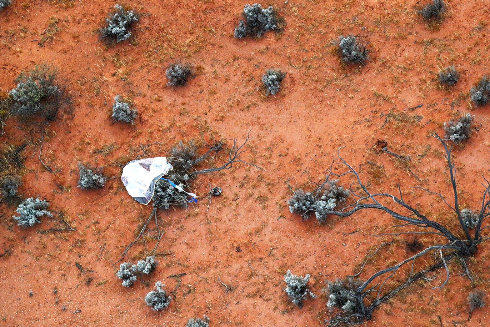 リュウグウの岩石サンプルが無事帰還、JAXAで分析へ