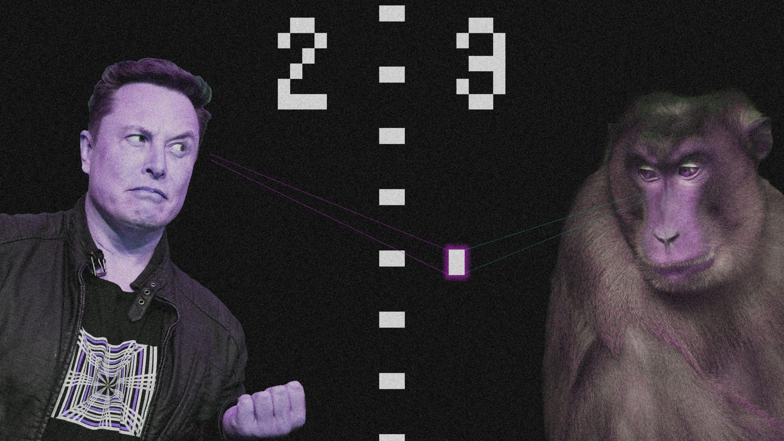 脳デバイスで卓球をプレイ、麻痺男性がE・マスクのサルに挑戦状