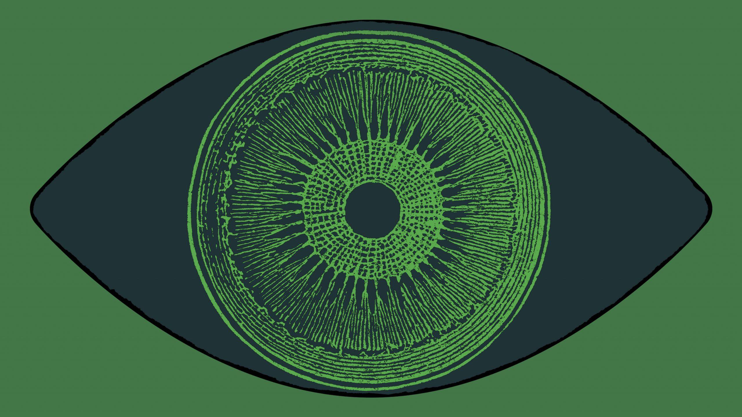 「藻」の遺伝子で失明から視力回復、光遺伝学で新成果