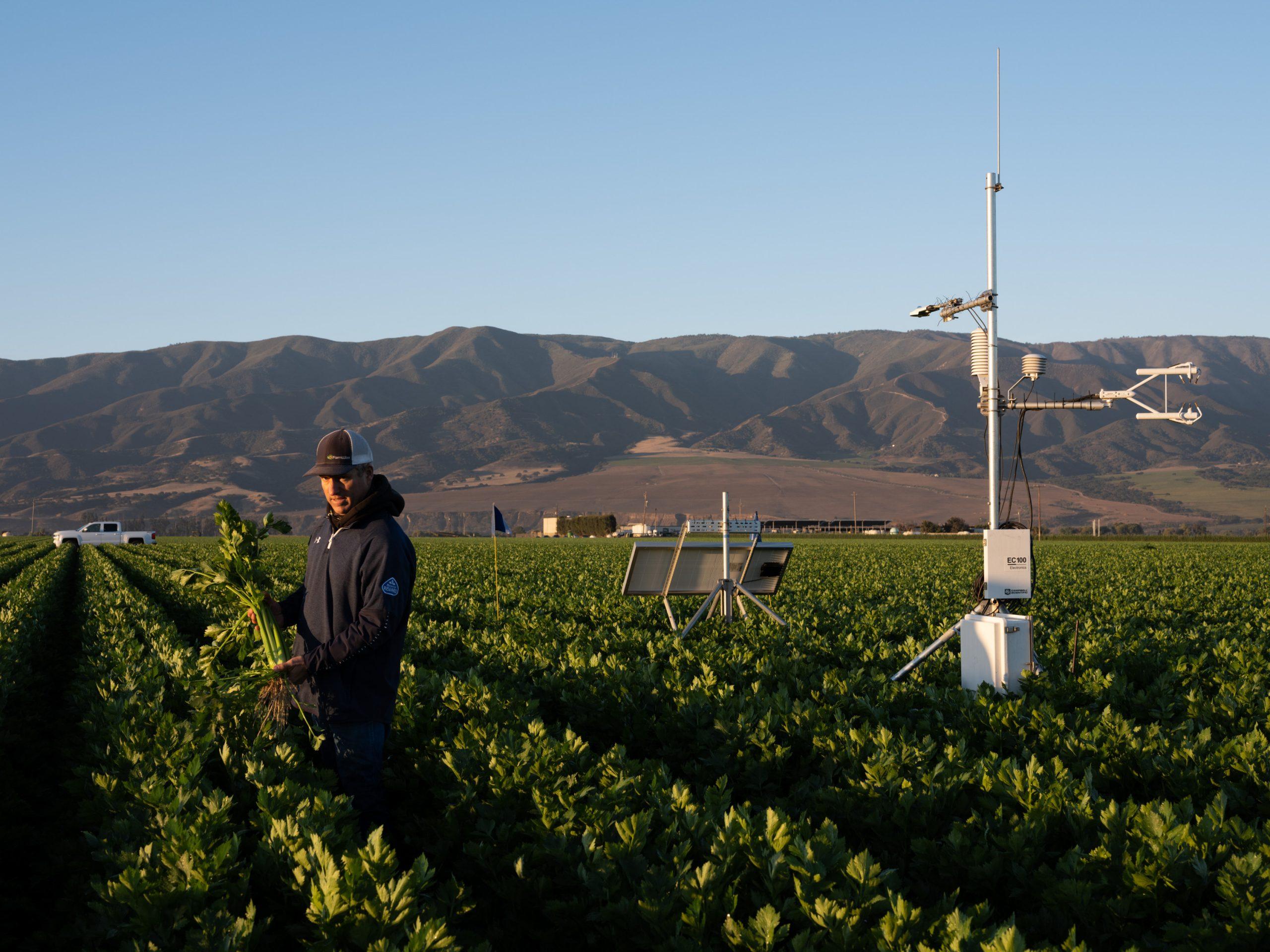 米国のサラダボウルで考えた 農業とアグテックの未来
