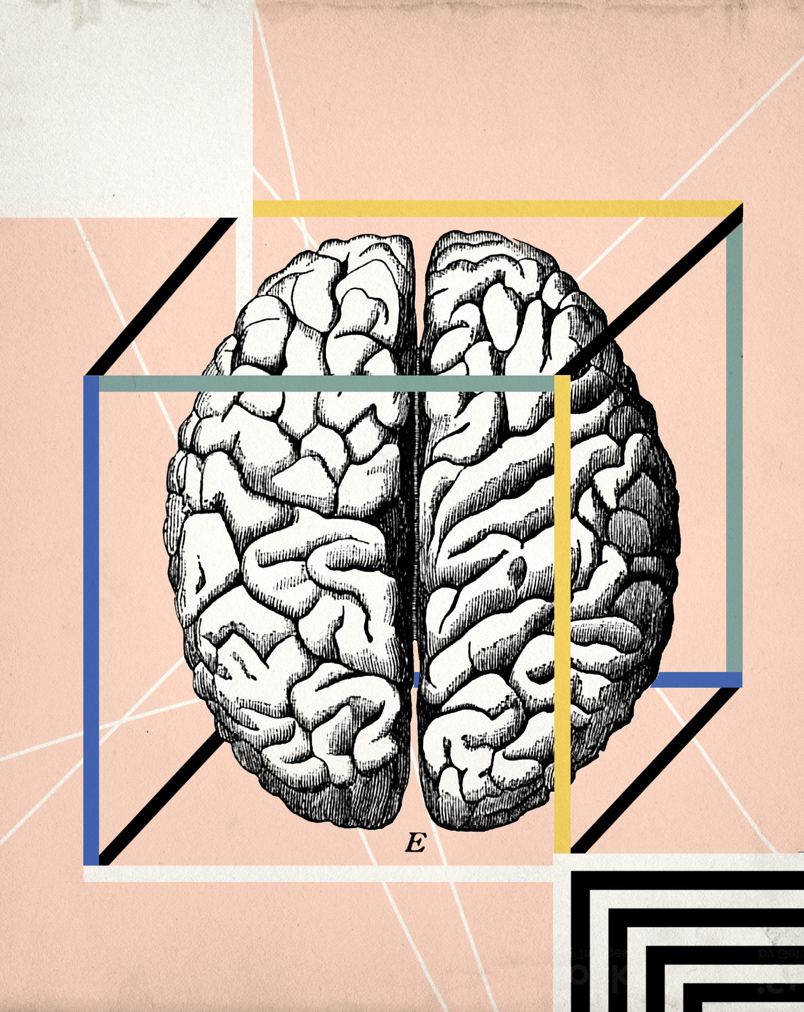 脳の解明を目指す「巨大科学」はなぜ行き詰まったのか